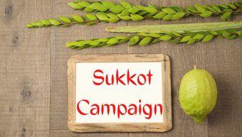 Sukkot Campaign