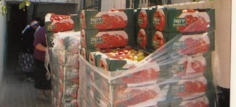 Surplus Produce Saved and Donated - Yad Eliezer