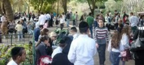 Trip To The Zoo For Families Living In War Zone - Yad Eliezer